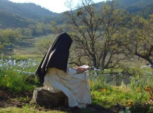 carthusian-nun-reading-a-book-in-a-field